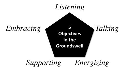 5 Objectives in the Groundswell