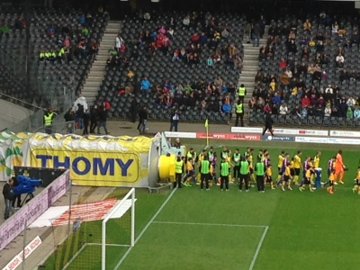 BSC Young Boys - Thomy Mustard