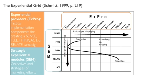 Figure 2: The Experiential Grid - SEMs and ExPros